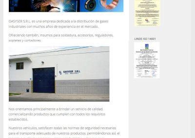 Sitio Web Gasyser  S.R.L.